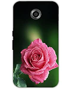 WEB9T9 Huawei Nexus 6 back cover Designer High Quality Premium Matte Finish 3D Case