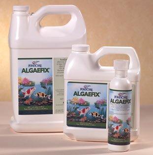 API PondCare Algae Fix 128 Oz
