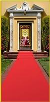 Red Carpet Runner Adult Red