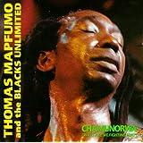 Chamunorwa / What Are We Fighting for