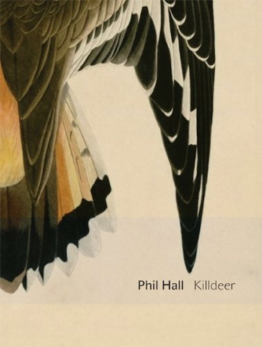 Killdeer: essay-poems