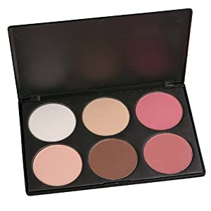Amazon.com: Coastal Scents Contour And Blush Palette: Beauty