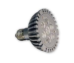 Light Efficient Design LED-1662 PAR30 E27 Base 120-Volt 10-Watt 7-LED Dimmable LM79 Bulb, Soft White