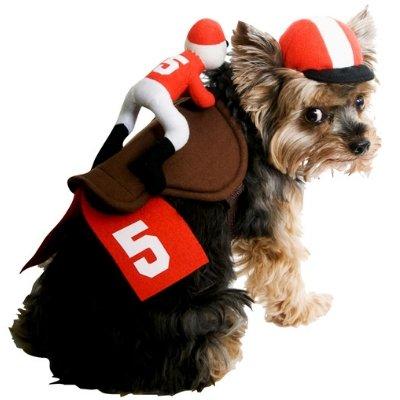 2 Piece Dog Jockey Costume Pet Rider & Hat Medium