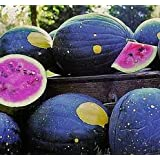 20 Heirlooms Moon And Stars Watermelon Seed By Stonysoil Seed Company..CERTIFIED USDA ORGANIC SEEDS