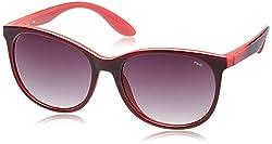 Fila Gradient Round Women's Sunglasses - (SF8952K568PASG|56|Grey Gradient)