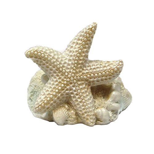 Treasures Of The Sea Collection Ocean Shell Themed Candle Holder (Set Of 3)