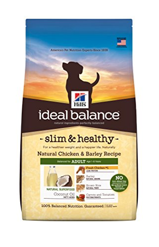 In Diet Dog Supplement