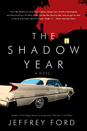 The Shadow Year: A Novel