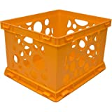 Large Storage Crate (Set of 6) Color: Neon Orange