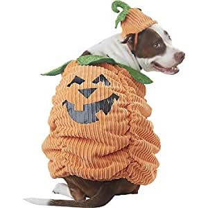 Pet costumes petco pumpkin halloween dog for Does petco sell fish