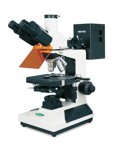 Vanguard 1282Ecm Brightfield Fluorescence Microscope With Trinocular Head, Halogen Illumination, 4X, 10X, 40X, 100X Magnification, 360 Degree Viewing Angle