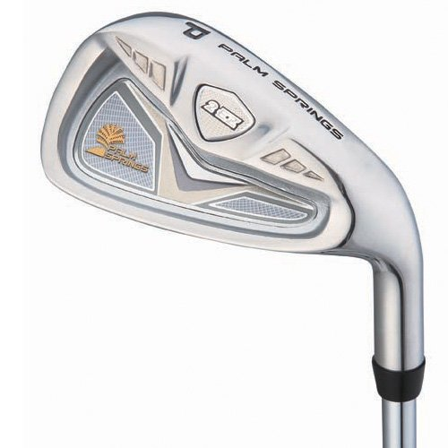 Palm Springs Golf 2ez Irons, Set of 7 (5-SW, Graphite, RH, Ladies)