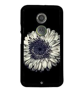 Beautiful White Flower 2D Hard Polycarbonate Designer Back Case Cover for Motorola Moto X2 :: Motorola Moto X (2nd Gen) :: Motorola Moto X 2014 :: Motorola Moto X+1
