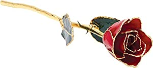 LACQ. Lacquer Red Rose With Gold Trim
