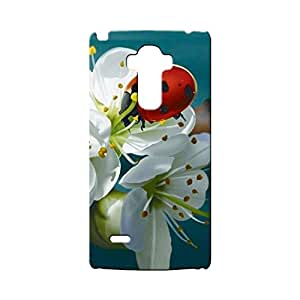 G-STAR Designer Printed Back case cover for LG G4 Stylus - G4537