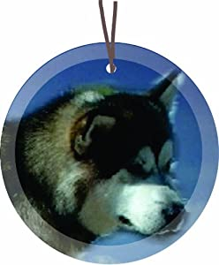 Alaskan Malamute Dog Round Glass Christmas Tree Ornament Suncatcher - Affordable Gift for your Loved One! Item #CFS-GO-303