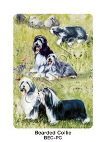 Best Friends Playing Cards, by Ruth Maystead - Bearded Collie