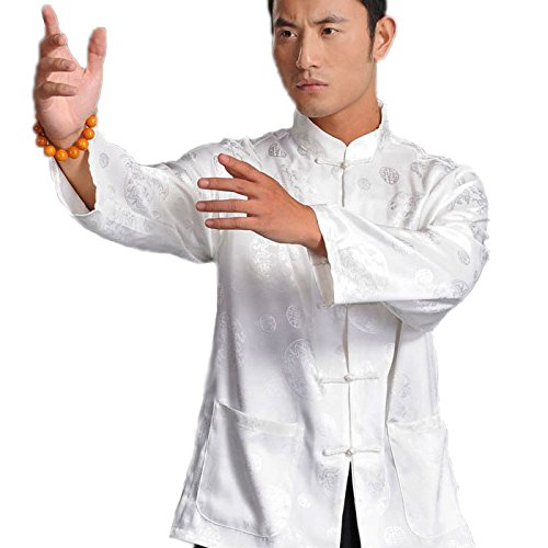 Chinese Style Traditional Tang Suit Men's Printed Kungfu Shirt Tai Chi Clothing