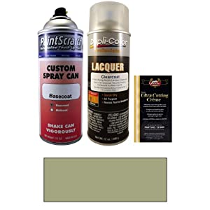 Hyundai Color Card Metallics on Metallic Spray Can Paint Kit For 2008 Hyundai Santa Fe  Td