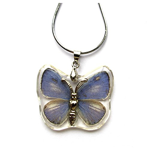 WeGlow International The Plains Cupid Butterfly Necklace