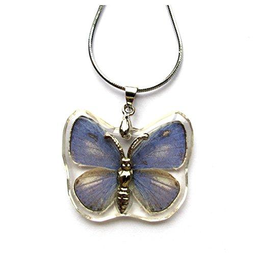 WeGlow International The Plains Cupid Butterfly Necklace