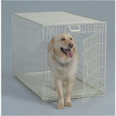 Bernese Mountain Dog Crate Size White Dog Crate Size 28w