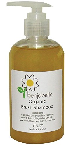 Benjabelle Organic Brush Shampoo (Organic Makeup Brush Cleaner compare prices)