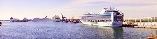 panoramic-images-ms-island-princess-cruise-ship-at-a-port-port-everglades-broward-county-florida-usa