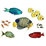 Walls of the Wild Combo Fish Pack OVERSTOCK!