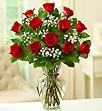 Rose Elegance Premium Long Stem Red Roses - One Dozen Red Roses