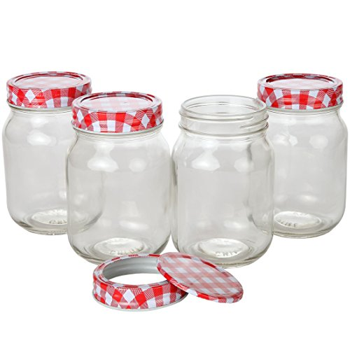 Lily's Home Glass Mason Jars, Jelly Jars, Storage Mason Jars with Lids and Bands. Pack of 4 (16 Ounce)