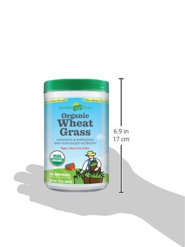 清肠排毒,Amazing Grass有机小麦苗粉 480g图片
