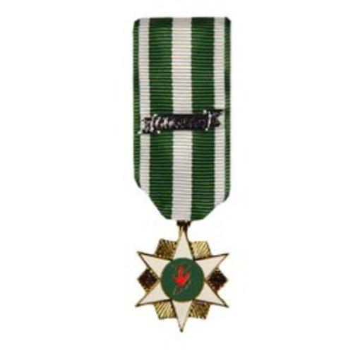 Vietnam Campaign Mini Medal