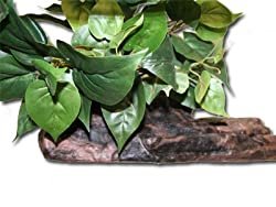 Magnaturals Medium Planter Ledge Earth - Magnetic Decor