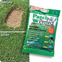 Patch Perfect Coated Seed Mixture