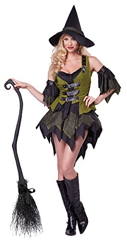 California Costumes Women's Bewitching Babe Sexy Witch Costume