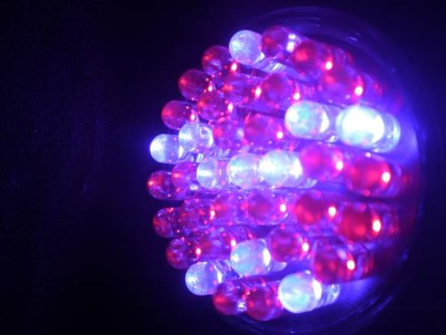 Acne Blue Red LED Light Therapy 38 LED Bulb for Treatment Acne and Acne Scars 415nm 660nm