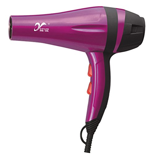 REBUNE2500W Hair Dryer Anion Five-speed Thermostat Silent Power Hair DryerSharon Family Use (2500 W Hair Dryer compare prices)