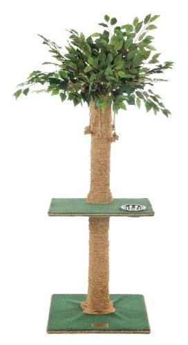 Kitty Palm Cat Tree with Ficus Foliage Top, Green Carpet, Manila Rope, 1 Platform, 48 Inches