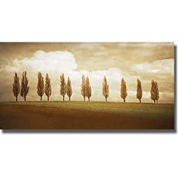 Before the Valley by Heather Jacks Premium Stretched Canvas (Ready to Hang)