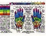 Inner Light Resources Rainbow Cards & Charts Series - Hand Reflex Chart (rainbow coded) - Original Laminated Charts