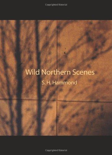Escenas del norte salvajes