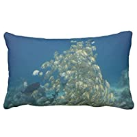 Zp Shine All Kinds Of Fishes In The Ocean Freely Green Decorative Home Pillowcase Cover Cushion Cover 20X36 inch by Zp Shine