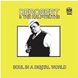 echange, troc Derobert, Half-Truths - Soul in a Digital World