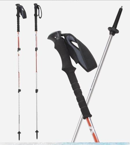Black Diamond Trail Trekking Poles (pair)