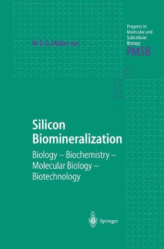 Silicon Biomineralization: Biology  -  Biochemistry  -  Molecular Biology  -  Biotechnology (Progress in Molecular and Subcellular Biology)