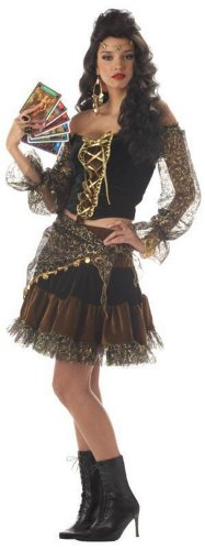 Gypsy Madame Destiny Adult Costume
