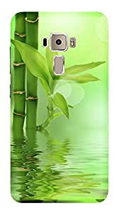 WOW Printed Designer Mobile Case Back Cover For Asus Zenfone 3