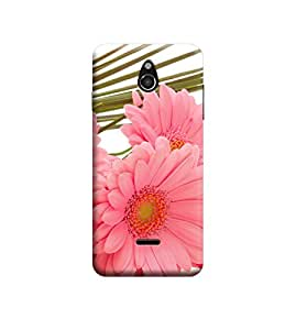 TransMute Premium Printed Back Case Cover With Full protection For InFocus M2 (Designer Case)